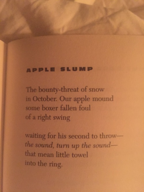 Muldoon - Apple Slump